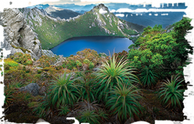 Multi day tours in Tasmania
